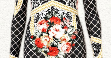 Busy Baroque Print Lace Floral Dress?!