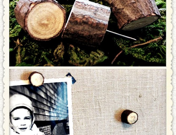 DIY Wood Twig Pushpins
