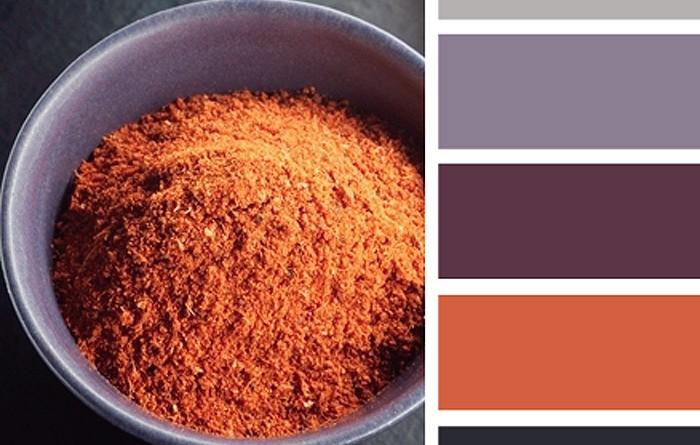 Spiced Color Palette