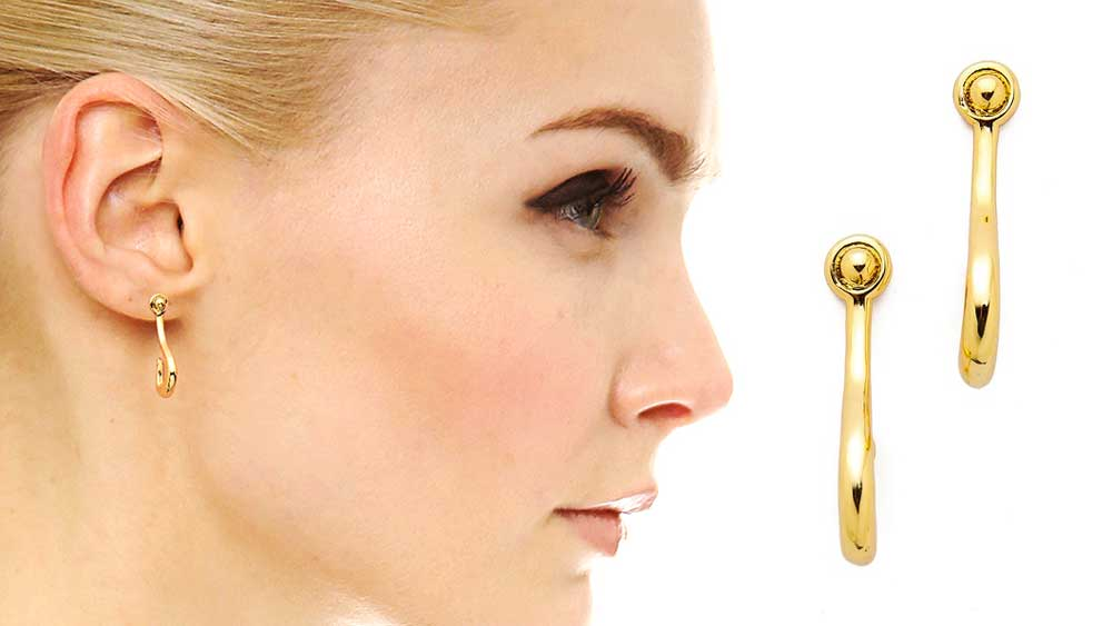 Giles and Brothers Hook Earrings
