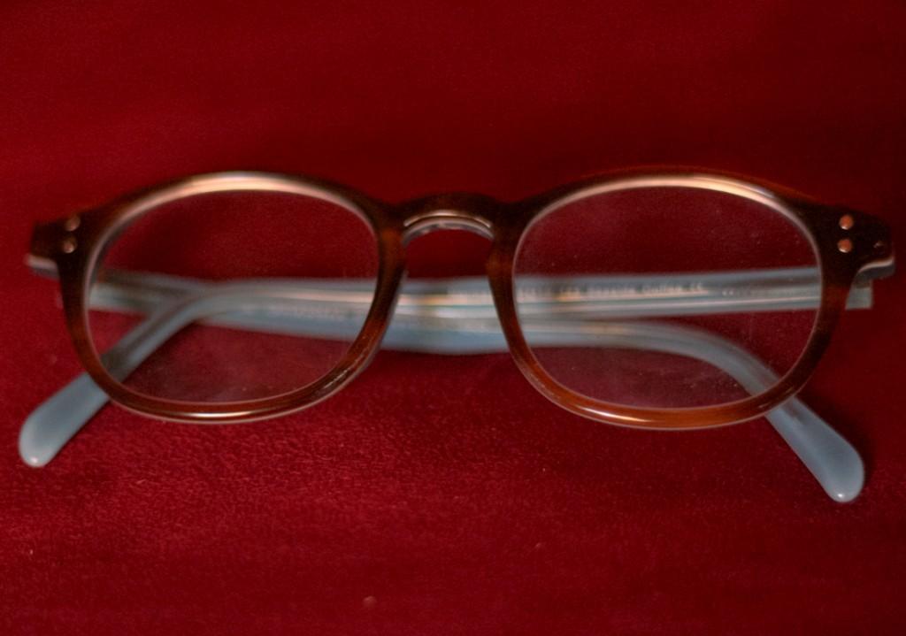 Dharma Co. Narmada Glasses-11