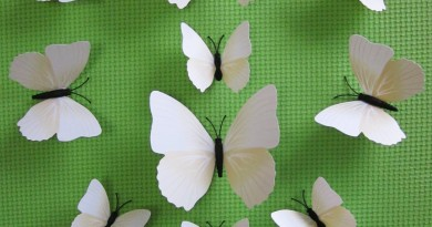 White Butterfly Decals