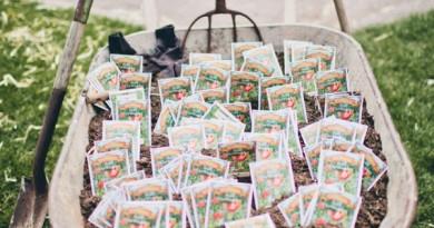 Seed Packets in Wheelbarrow
